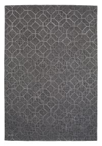 Polo 202 Grey Modern Wool Rug